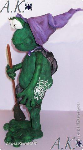 Знакомьтесь Ведьмочка-Эльза, самая загадочная лягушка среди своих подруг фото 2