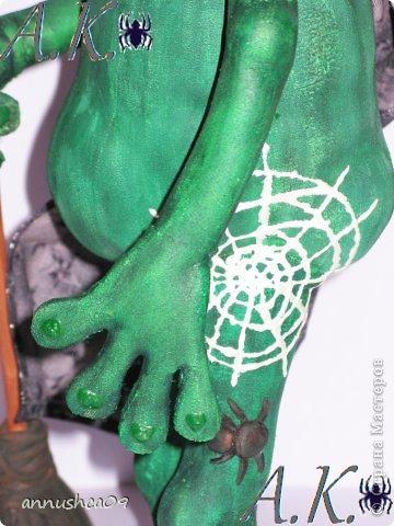 Знакомьтесь Ведьмочка-Эльза, самая загадочная лягушка среди своих подруг фото 3