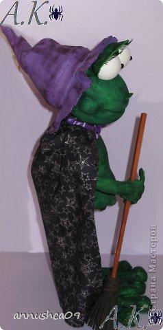 Знакомьтесь Ведьмочка-Эльза, самая загадочная лягушка среди своих подруг фото 7