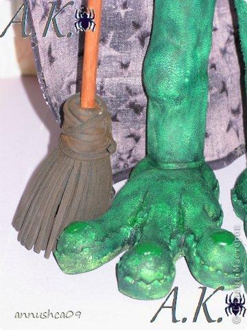 Знакомьтесь Ведьмочка-Эльза, самая загадочная лягушка среди своих подруг фото 6