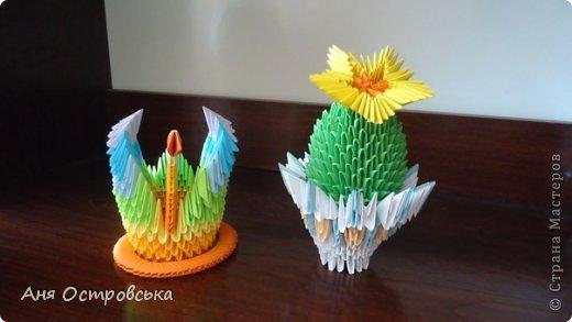 Модульный кактус фото 3