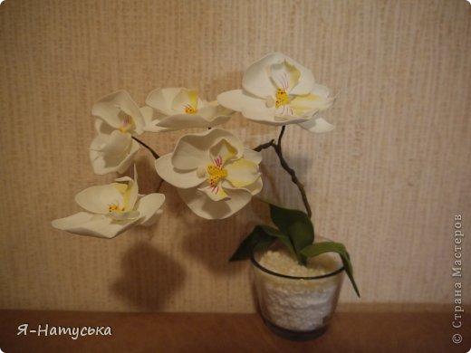 Орхидея из фоамирана: мастер-класс с пошаговым