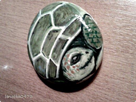 черепаха (роспись камня) фото 2