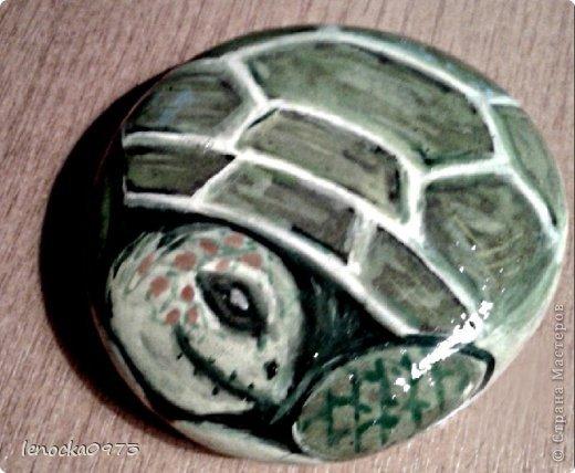 черепаха (роспись камня) фото 1