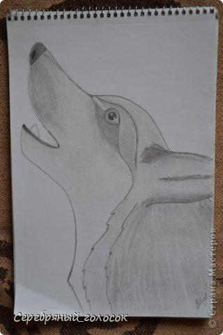 Совсем не художник) Рисовать училась в школе на уроках, сейчас рисую для себя, ну и чтобы было, что ребятам на уроке показать) Пройдемся по мультяшкам))) Джерри Маус фото 32