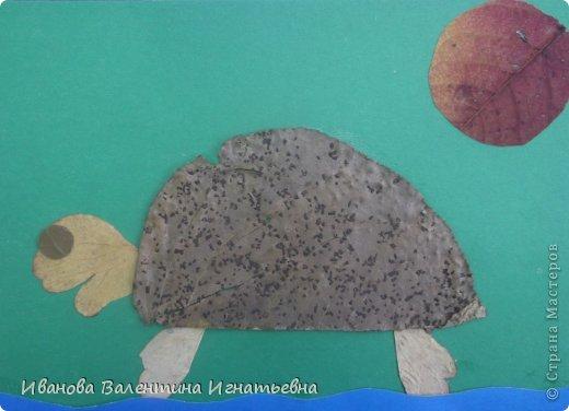 Аппликацию выполнил ученик 2 класса Храмцов Илья. Выполнена из природных материалов и крупы. фото 3