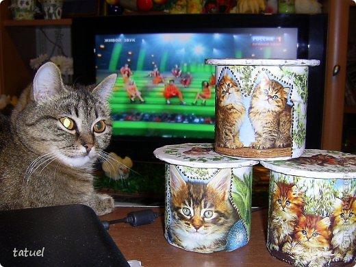 Приветствую всех мастериц! Из маленьких бабин, высотой в 8 см. получились небольшие баночки, причем на каждой следующей количество котят увеличивается- один, два и три! фото 14