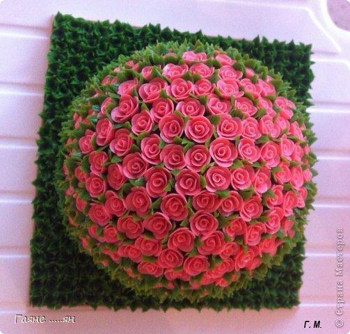 розы из пластилина фото 3