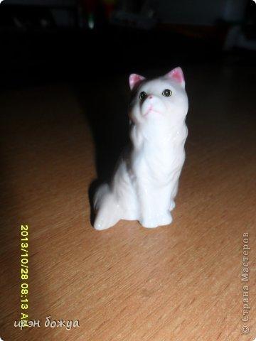 Я любительница кошек. С тех пор как вышла замуж(24 года назад) столько же у меня живут коты.Всегда. разные но есть. Про Ваську,Барсика и Кузю я уже писала(см.блог). Решила показать свою маленькую коллекцию кошек, которые у меня дома и на работе. фото 20