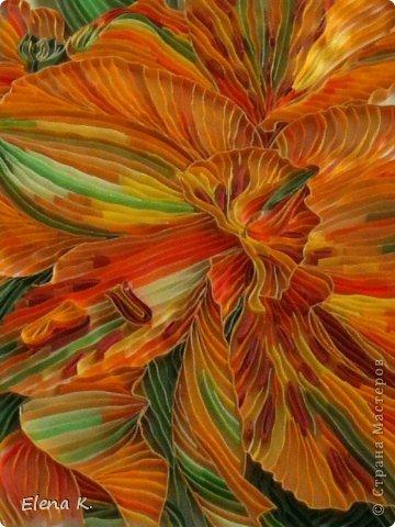 тропический цветок фото 4