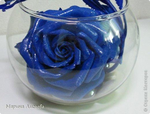 Здравствуйте, уважаемые жители СМ! Ах, как давно я мечтала о синей розе! И наконец - вот она! фото 4