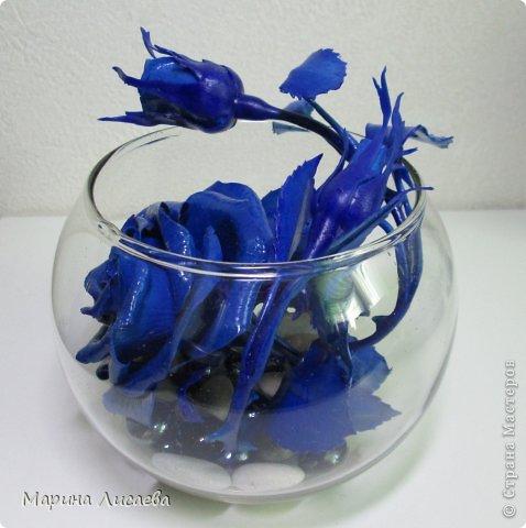 Здравствуйте, уважаемые жители СМ! Ах, как давно я мечтала о синей розе! И наконец - вот она! фото 2
