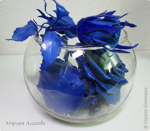 Здравствуйте, уважаемые жители СМ! Ах, как давно я мечтала о синей розе! И наконец - вот она! фото 3