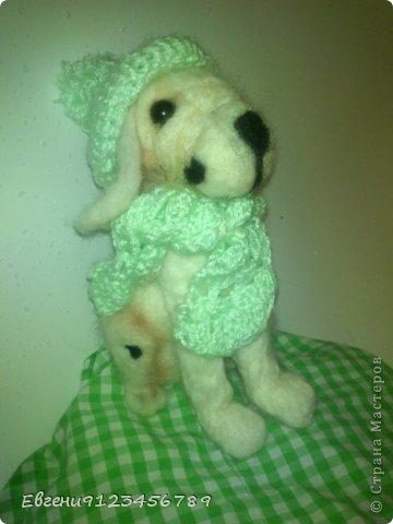 """Ух!Давно я ничего не выкладывала!!Ну,ладно сегодня я покажу сразу две работы,свалянные за это время. И первая собачка...вот такая вот милая собачка.Её зовут Лизи. Она собачка породы """"далматинец""""."""