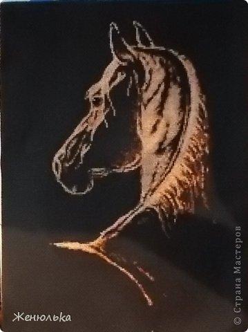 Вышивка крестом Лошадь и