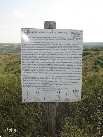 Клебан-Бык небольшой заповедник в Донецкой области. Когда-то здесь плескалось о берег море... Заповедник не самый известный, но, может, оно и к лучшему... Непуганное место, вольное. фото 10