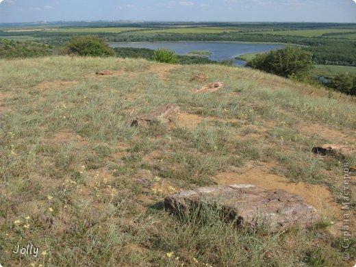 Клебан-Бык небольшой заповедник в Донецкой области. Когда-то здесь плескалось о берег море... Заповедник не самый известный, но, может, оно и к лучшему... Непуганное место, вольное. фото 14