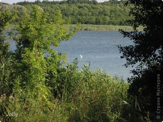 Клебан-Бык небольшой заповедник в Донецкой области. Когда-то здесь плескалось о берег море... Заповедник не самый известный, но, может, оно и к лучшему... Непуганное место, вольное. фото 23