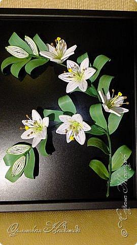 Сделала в подарок очень хорошей женщине, она очень любит эти замечательные цветы!  фото 4