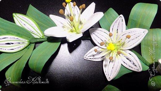 Сделала в подарок очень хорошей женщине, она очень любит эти замечательные цветы!  фото 7