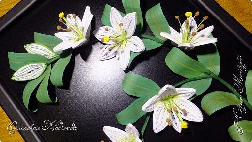 Сделала в подарок очень хорошей женщине, она очень любит эти замечательные цветы!  фото 5
