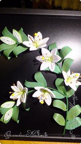 Сделала в подарок очень хорошей женщине, она очень любит эти замечательные цветы!  фото 3