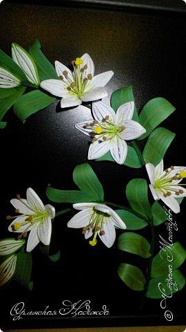 Сделала в подарок очень хорошей женщине, она очень любит эти замечательные цветы!  фото 9