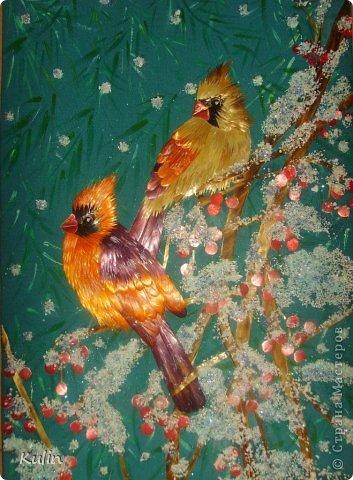 прилетели как-то под окошко птички, сели ветку... а за окном снег кружит, нахохлились пташки... фото 1