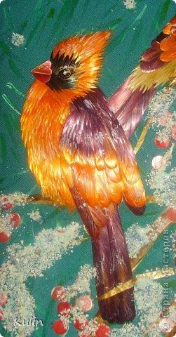 прилетели как-то под окошко птички, сели ветку... а за окном снег кружит, нахохлились пташки... фото 2