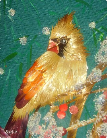 прилетели как-то под окошко птички, сели ветку... а за окном снег кружит, нахохлились пташки... фото 3