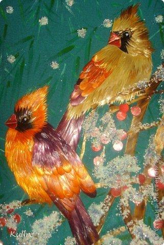 прилетели как-то под окошко птички, сели ветку... а за окном снег кружит, нахохлились пташки... фото 4