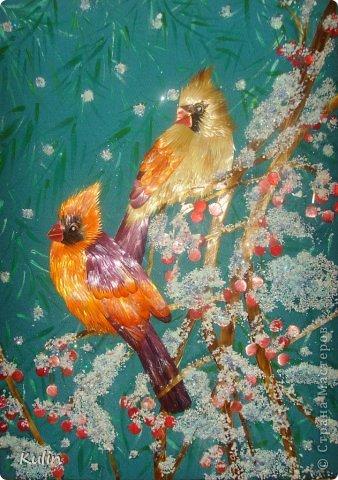 прилетели как-то под окошко птички, сели ветку... а за окном снег кружит, нахохлились пташки... фото 5