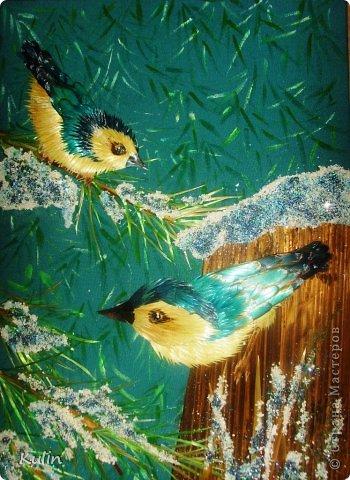 вот такие почти голубые птички прилетели из ближайшего лесочка... фото 1