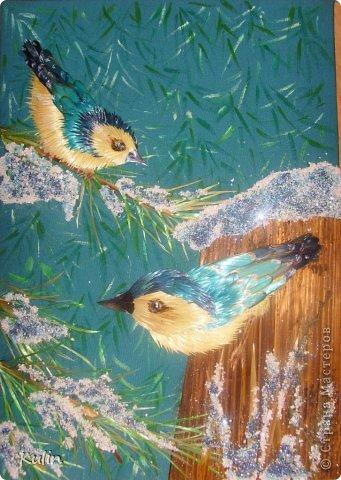 вот такие почти голубые птички прилетели из ближайшего лесочка... фото 5