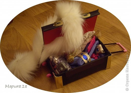 На улице холодно и сыро и наши куколки решили отправиться в жаркие страны и для этой цели прикупили чемодан. фото 1