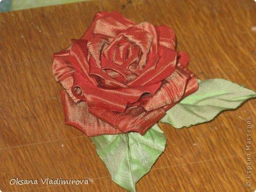 Мои Розочки и Хризантэмки из ткани фото 1