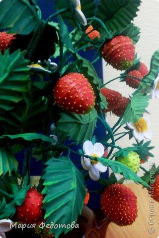 """Девушки - рукодельницы,приветствую Вас!Кто-то  уже готовится к встрече Нового года,а у меня  - макушка лета!Клубника поспела!!!!!!Вчера был День рождения моей любимой родной сестры.Да и не просто День рождения - Юбилей!Этот горшочек с кустом клубники  - подарок моей сестрёнке.Количество ягодок и цветов в горшочке - в полном соответствии с юбилейной датой.Кому интересно ,и не лень  - посчитайте (примерно)по этому фото и умножьте на 2.Это и будет количество Юбилейных лет...Цветы и ягодки как бы символизируют """"этапы жизненного пути"""" ...Цветочки - детство, зеленые ягодки - отрочество,розовые ягодки - юность ,красные ягодки - зрелость( ну,это,конечно же,просто для того,чтобы поинтереснее сопроводить словами вручение подарка). фото 6"""