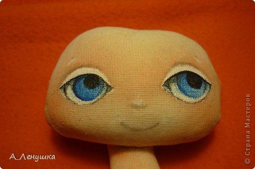 Сегодня я попробую рассказать, как нарисовать глазки кукле. Буду больше рассказывать, поэтому следите за текстом. Людей, получивших специальное образование, прошу не ехидничать! Нам понадобиться: 1 Краски акриловые 2 Кисти синтетические 3 Тушка куклы загрунтованная ( я грунтую смесью 0,5 воды+ 0.5 ПВА+ краска акриловая) 4 Вода 5 Лист бумаги (вместо палитры) 6 Карандаш простой и ластик. фото 6