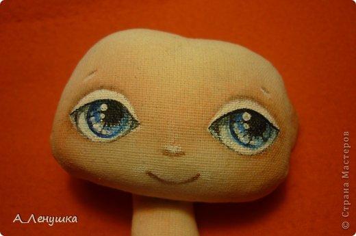 Сегодня я попробую рассказать, как нарисовать глазки кукле. Буду больше рассказывать, поэтому следите за текстом. Людей, получивших специальное образование, прошу не ехидничать! Нам понадобиться: 1 Краски акриловые 2 Кисти синтетические 3 Тушка куклы загрунтованная ( я грунтую смесью 0,5 воды+ 0.5 ПВА+ краска акриловая) 4 Вода 5 Лист бумаги (вместо палитры) 6 Карандаш простой и ластик. фото 8