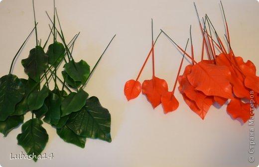 Мастер-класс Флористика Новый год Лепка Рождественский цветок пуансетия из холодного фарфора Фарфор холодный фото 20