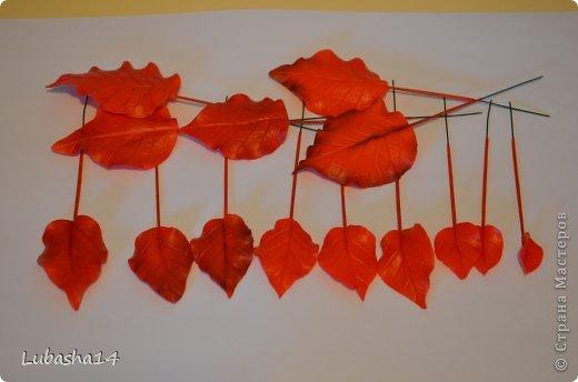 Мастер-класс Флористика Новый год Лепка Рождественский цветок пуансетия из холодного фарфора Фарфор холодный фото 24