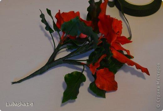 Мастер-класс Флористика Новый год Лепка Рождественский цветок пуансетия из холодного фарфора Фарфор холодный фото 41