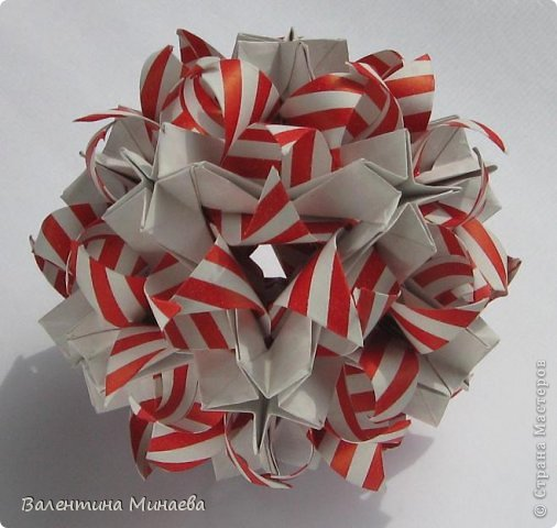 Name: Curly tulip
