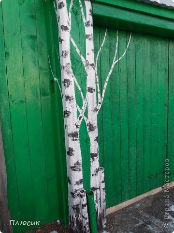 """Это ворота моего дома. Образ берёзок появился в результате одной бессонной ночи с мыслями: """"Завтра ворота надо покрасить. Зелёная краска есть, но мало. Может белую как-нибудь пристроить? Может столбы белым покрасить?.....""""  фото 2"""