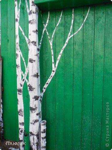 """Это ворота моего дома. Образ берёзок появился в результате одной бессонной ночи с мыслями: """"Завтра ворота надо покрасить. Зелёная краска есть, но мало. Может белую как-нибудь пристроить? Может столбы белым покрасить?.....""""  фото 3"""