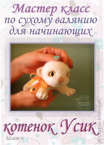 Мастер-класс Валяние фильцевание Котёнок Усик Шерсть фото 1