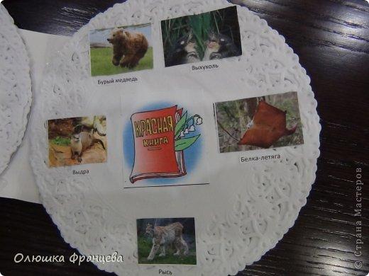 """В школе задали сделать проект """"Книжка-малышка про животных"""". Вот я и сделала книжку из компьютерных дисков с наклееными на них салфетками да прибавила еще 2 бумажных ушка. Получилась вот такая мордашка зайца фото 3"""