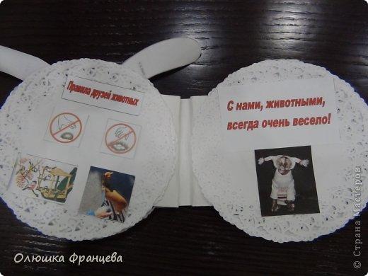 """В школе задали сделать проект """"Книжка-малышка про животных"""". Вот я и сделала книжку из компьютерных дисков с наклееными на них салфетками да прибавила еще 2 бумажных ушка. Получилась вот такая мордашка зайца фото 4"""
