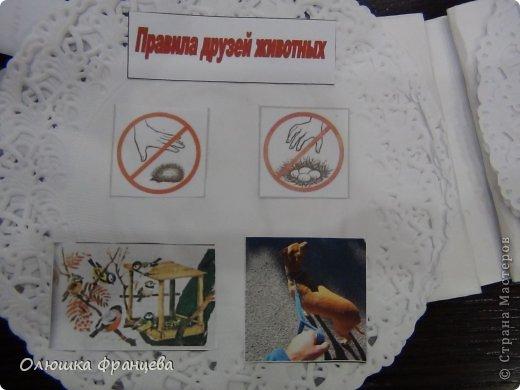 """В школе задали сделать проект """"Книжка-малышка про животных"""". Вот я и сделала книжку из компьютерных дисков с наклееными на них салфетками да прибавила еще 2 бумажных ушка. Получилась вот такая мордашка зайца фото 5"""