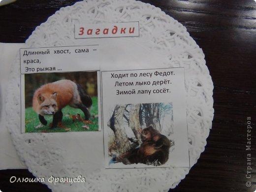 """В школе задали сделать проект """"Книжка-малышка про животных"""". Вот я и сделала книжку из компьютерных дисков с наклееными на них салфетками да прибавила еще 2 бумажных ушка. Получилась вот такая мордашка зайца фото 9"""